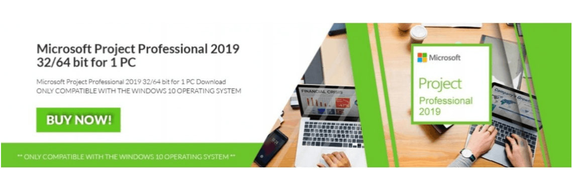 Microsoft Project 2019