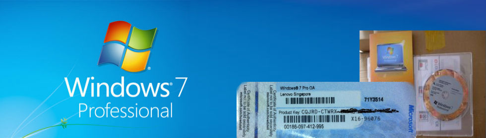 Windows 7 Professional Product key Sticker